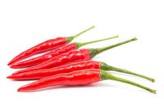 Rood Chili Pepper Royalty-vrije Stock Foto's
