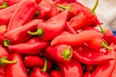 Rood Chili Pepper Stack royalty-vrije stock foto's