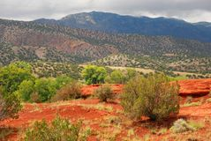 Rood Clay Dirt in Jemez-Bergen New Mexico Stock Foto's