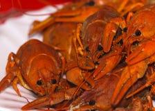 Rood crawfishes op een plaat wordt gekookt die royalty-vrije stock foto