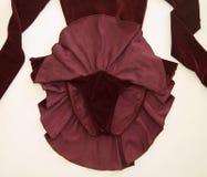 Rood de Bodemweergeven van de Kunstschaatsenkleding stock fotografie