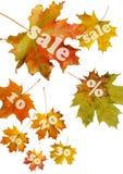 Rood de herfstblad Royalty-vrije Stock Foto's