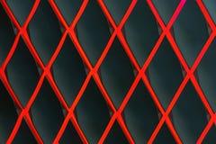 Rood diamantvormig rooster tegen een donkere achtergrond royalty-vrije stock foto