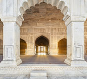 Rood die Fort in Agra, India wordt gevestigd Royalty-vrije Stock Afbeelding