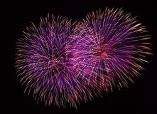 Rood die vuurwerk in donkere dichte omhooggaand als achtergrond met de plaats voor tekst wordt geïsoleerd, het vuurwerkfestival v Stock Afbeelding