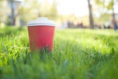 Rood document glas met wit deksel voor koffie royalty-vrije stock afbeelding