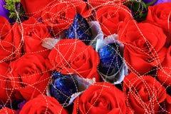 Rood en Blauw nam toe stock afbeelding