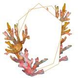 Rood en geel aquatisch aardkoraalrif Waterverf achtergrondillustratiereeks Het ornamentvierkant van de kadergrens royalty-vrije stock afbeeldingen
