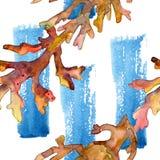 Rood en geel aquatisch onderwateraardkoraalrif De reeks van de waterverfillustratie Naadloos patroon als achtergrond stock foto's