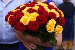 Rood en geel rozenboeket in de handen Stock Afbeeldingen