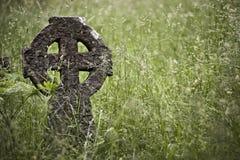 Rood en pierre photo libre de droits