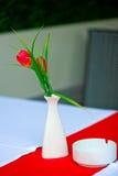 Rood-en-wit Stock Afbeeldingen