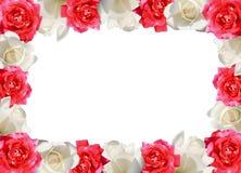 Rood en wit nam toe Royalty-vrije Stock Afbeelding