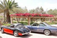 Rood en zwart Austin Healey 3000 stelde in Lima tentoon Stock Foto's