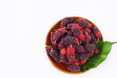 Rood en zwart bessen en moerbeiboomblad in bruine kom op het witte geïsoleerde voedsel van het achtergrond gezonde moerbeiboomfru Royalty-vrije Stock Afbeeldingen