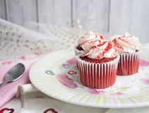 Rood Fluweel Cupcakes Royalty-vrije Stock Foto