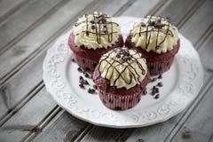 Rood Fluweel Cupcakes Stock Afbeeldingen