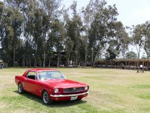 Rood Ford Mustang V289 1966 in Mamacona, Lima Stock Foto's