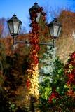 Rood gebladerte die de lantaarnpaal verdraaien tot de bovenkant stock afbeeldingen