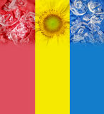 Rood-geel-blauwe drie-kleur Royalty-vrije Stock Afbeeldingen
