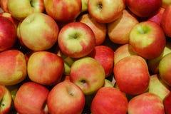 Rood-gele appelen Stock Fotografie
