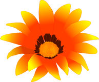 rood-gele bloem (rasterize F vector illustratie
