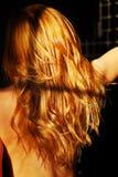 Rood Haar Stock Fotografie