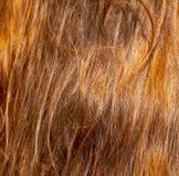 Rood haar op het hoofd van het meisje als abstracte achtergrond stock foto
