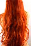 Rood haar, wiev van de rug Royalty-vrije Stock Afbeeldingen