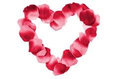 Rood hart dat van bloemblaadjes wordt gemaakt Royalty-vrije Stock Fotografie