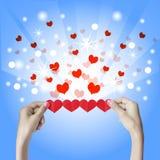 Rood hart in de handen Stock Foto's