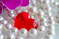 Rood hart met parels en orchideeën Stock Foto