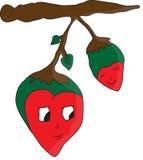 Rood hart op boom Stock Foto's