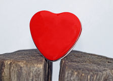 Rood hart op witte achtergrond Royalty-vrije Stock Foto