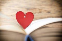Rood hart van het boek Geplaatste vector: Modieuze 2014 paarden Stock Foto's