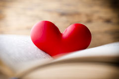 Rood hart van het boek Geplaatste vector: Modieuze 2014 paarden Royalty-vrije Stock Foto