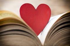 Rood hart van het boek Geplaatste vector: Modieuze 2014 paarden Royalty-vrije Stock Fotografie