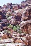 Rood het Behoudsgebied van de Rotscanion, Nevada, de V.S. stock afbeeldingen