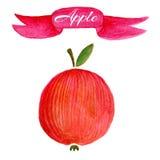 Rood het ontwerpmalplaatje van het appelembleem voedsel of fruitpictogram Royalty-vrije Stock Foto's