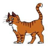 Rood kattenmannetje vector illustratie