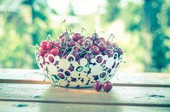Rood kersenfruit Royalty-vrije Stock Afbeelding