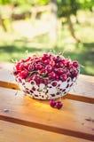 Rood kersenfruit Royalty-vrije Stock Afbeeldingen