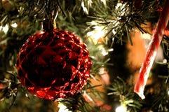 Rood Kerstmisornament en suikergoedriet Stock Foto