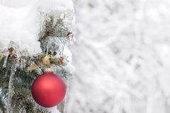 Rood Kerstmisornament op openluchtboom stock afbeelding