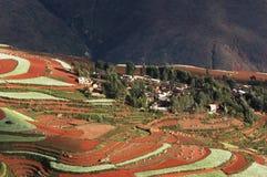 Rood land Royalty-vrije Stock Afbeeldingen