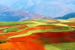 Rood land royalty-vrije stock foto's