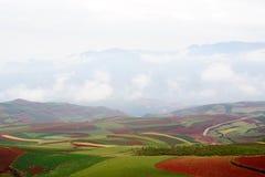 Rood land stock afbeelding