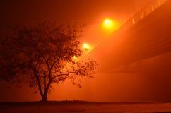 Rood landschap in de nacht stock afbeeldingen