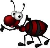Rood mierenbeeldverhaal Stock Foto