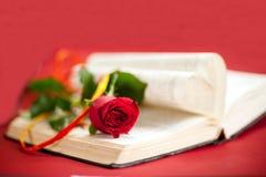 rood nam bij boek toe Royalty-vrije Stock Fotografie